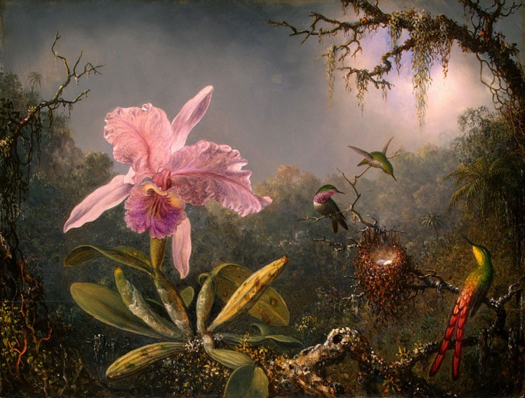 martin-johnson-heade-cattleya-orchid-and-three-brazilian-hummingbirds
