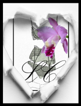 broderie_logo LC-fleur_def